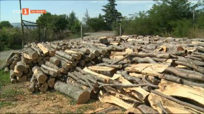 Колко ще ни струва отоплението на дърва тази зима?