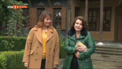 България в 60 минути на живо от Пловдив с Галена Паскова
