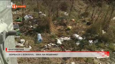 Борбата с боклука в Благоевград - има ли решения