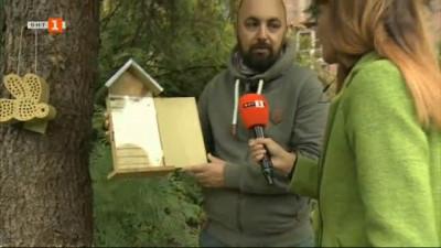 Убежища за насекоми, които облагородяват градското биоразнообразие