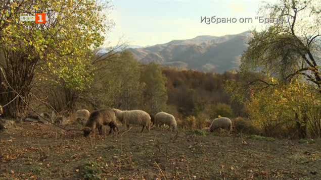 """Избрано от """"Бразди"""": Красотите на Тетевенския балкан"""