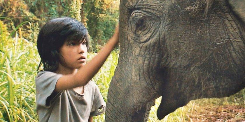 Моят слон Лъки