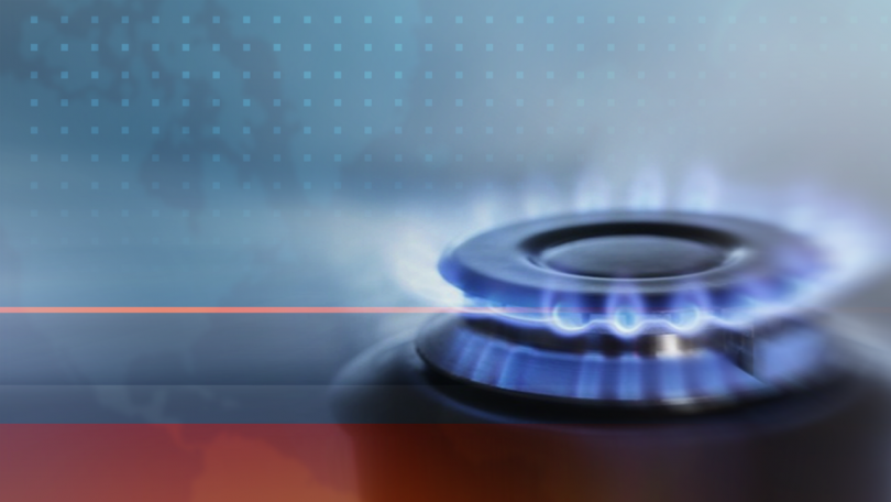 Energy regulator approved the rise in natural gas price as of September
