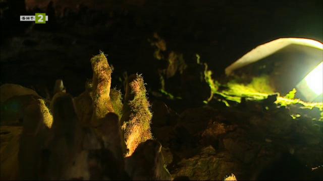 """Пещера """"Снежанка"""""""