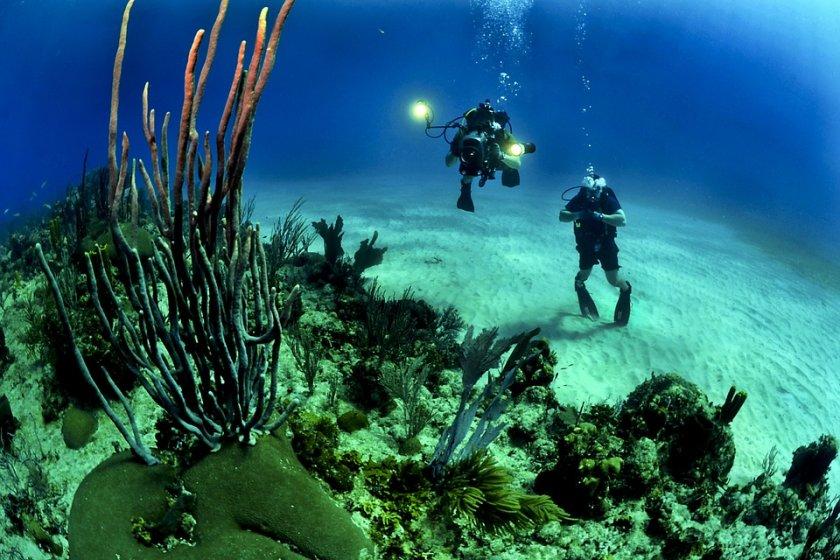 Хората-амфибия или един подводен експеримент