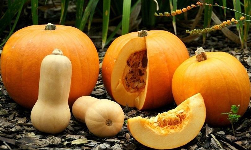 Какви са лечебните свойства на кестените и тиквата?