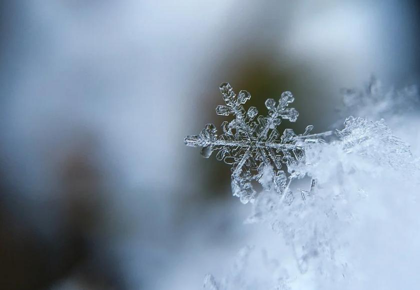 Каква зима ни очаква?