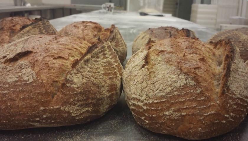 Особености на обредните хлябове и борбата за възраждане на старите балкански сортове пшеница