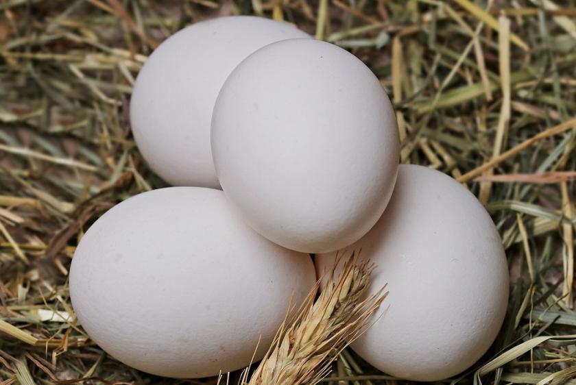 Яйца от кокошки и пъдпъдъци