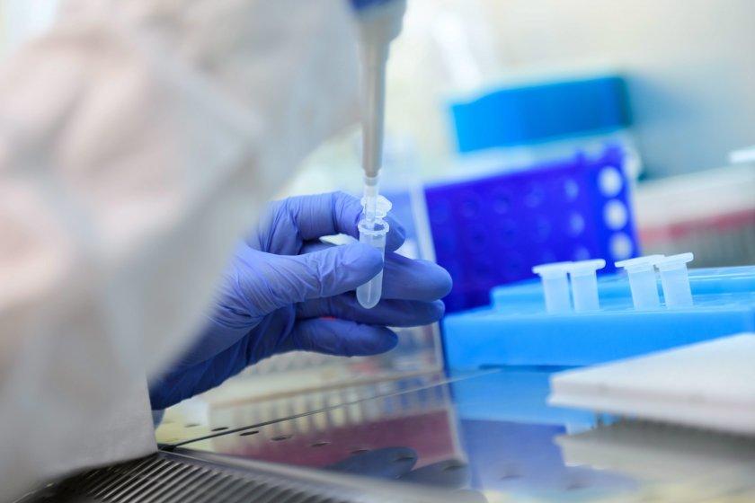 Coronavirus in Bulgaria: 913 new cases