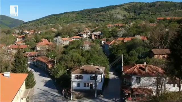 Село Свежен