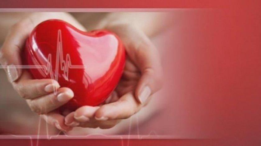 Отбелязваме Световния ден на здравето и здравния работник