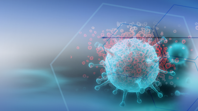 Coronavirus in Bulgaria: 4,004 new cases; active cases rise to 70,757