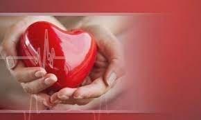 Как да се погрижим за сърдечно-съдовата си система?