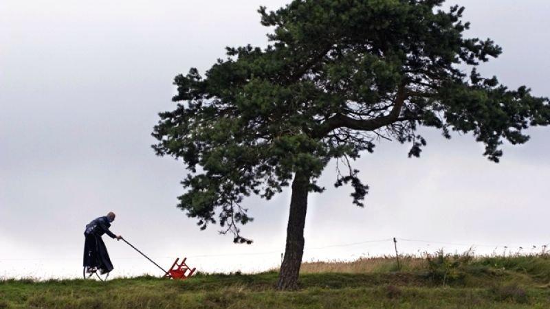 Вълшебното дърво