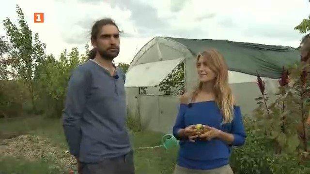 Софи и Краси и тяхната овощна градина