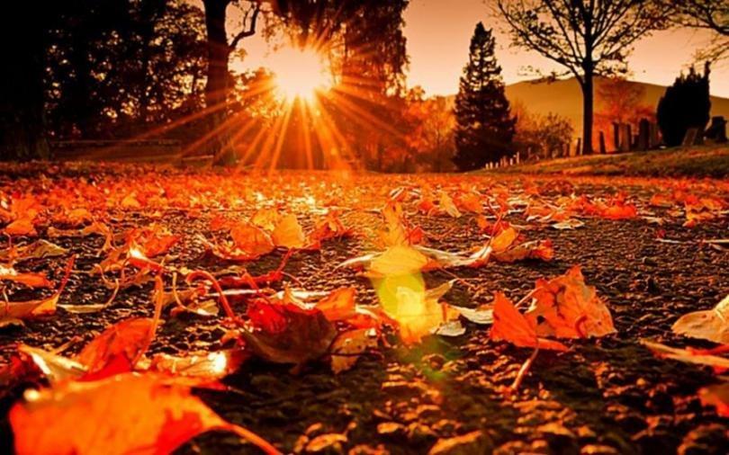 Какви температури ни чакат тази есен