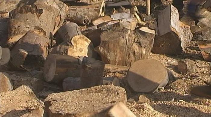 Ще има ли недостиг на дърва за огрев през зимата?
