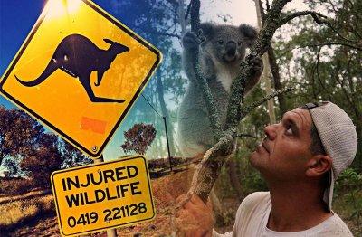 Дивия Франк в Австралия
