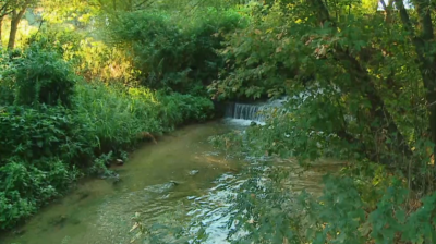 Pollution in the Maritsa: Nitrogen compounds found in its waters