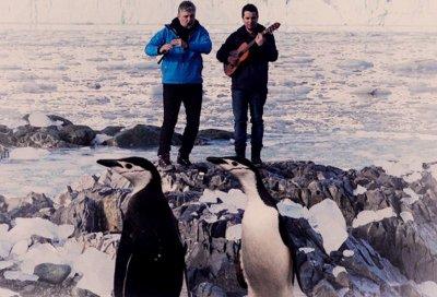 Танцът на пингвините