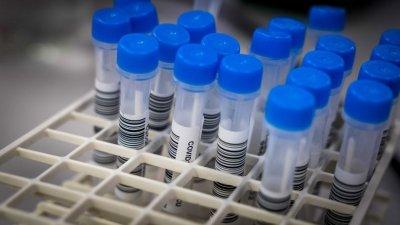 Coronavirus in Bulgaria: 1,352 new cases