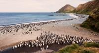 снимка 19 Отдалечените острови на Австралия