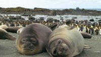 снимка 17 Отдалечените острови на Австралия