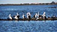 снимка 4 Отдалечените острови на Австралия