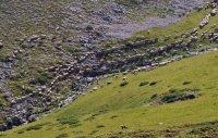 снимка 7 Един ден под връх Триглав