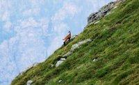 снимка 2 Един ден под връх Триглав