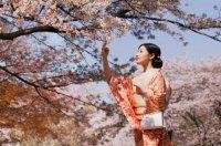 снимка 4 Япония отблизо