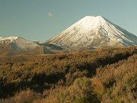 снимка 5 Под Нова Зеландия